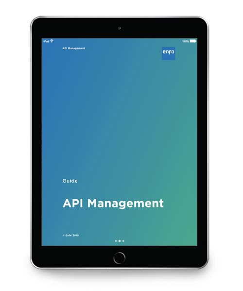 Guide_ API_management_2019_iPad