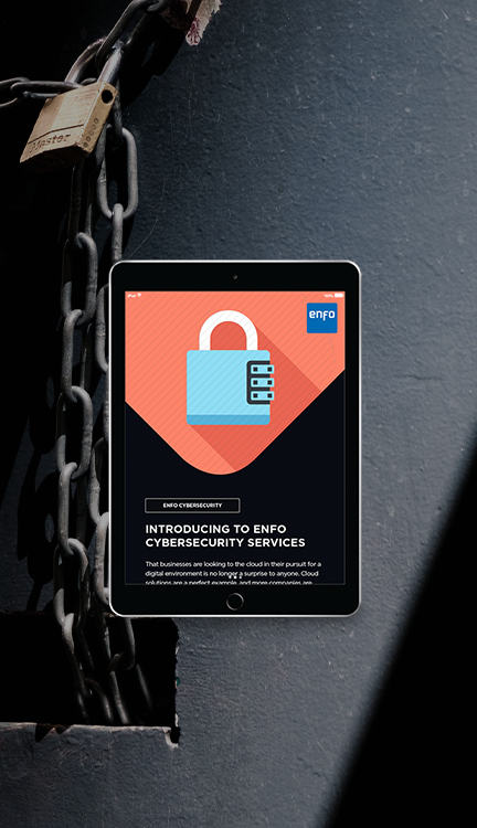 Enfo CyberSecurity Services_LP-image